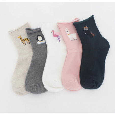 Pack 5 paires - chaussettes...